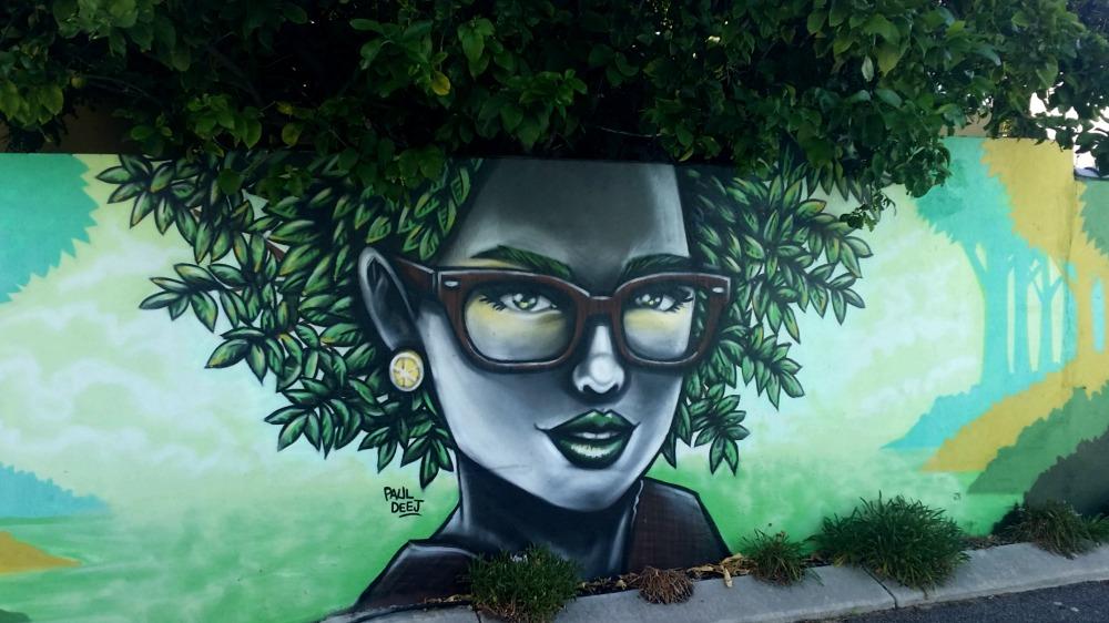Paul Deej Mount Lawley Hair mural