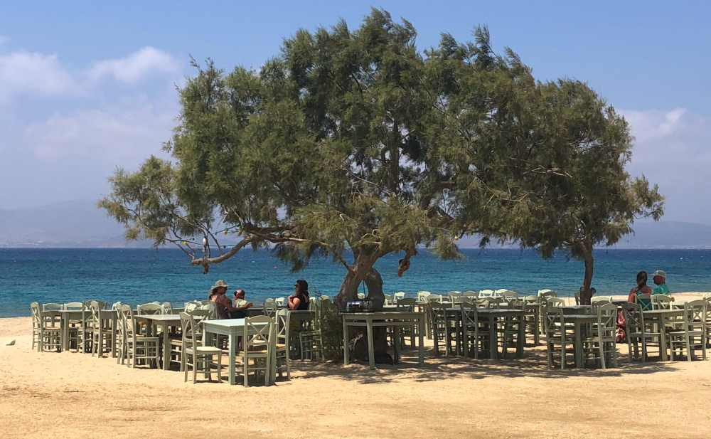 Plaka beach cafe under a big tree