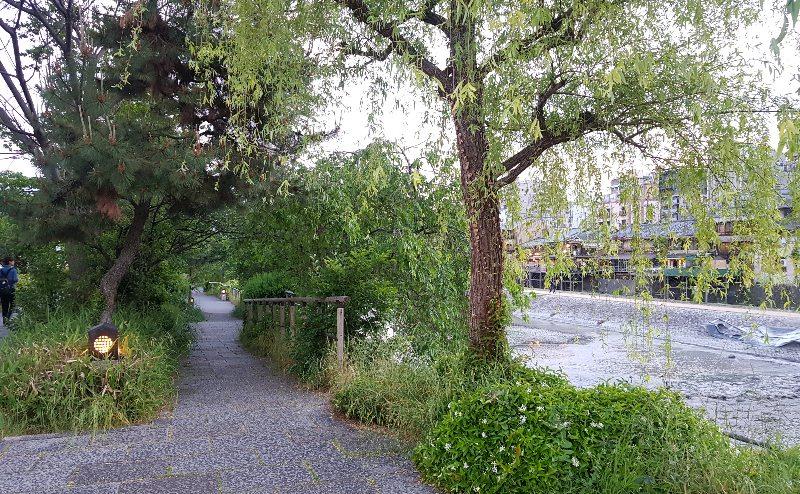 Kamo River Kyoto